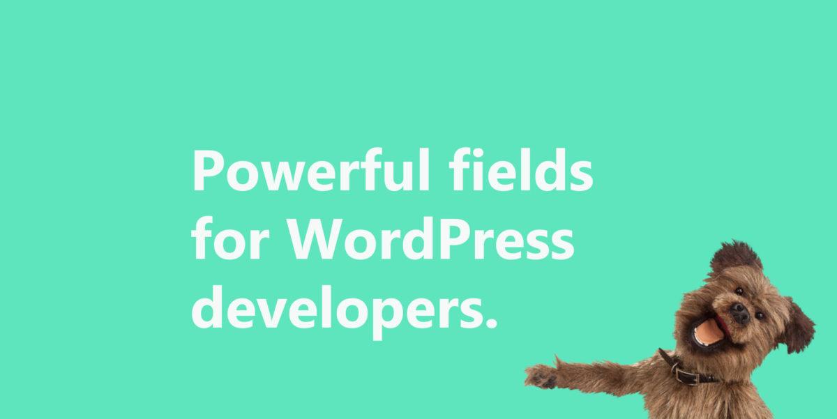Záznam webináře: Jak pracovat s vlastními poli ve WordPressu?